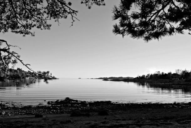 Photo by joséluis vázquez domènech - sandefjord - norge